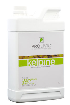 Prolivic Kelpine 1.0L
