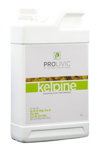 Prolivic Kelpine 1.0L