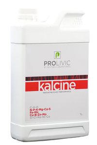 Prolivic Kalcine 1.0L